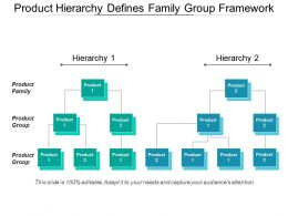 Product Hierarchy Defines Family Group Framework