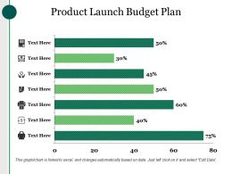 Product Launch Budget Plan Ppt Examples Slides