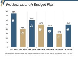 Product Launch Budget Plan Ppt Files