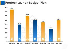 Product Launch Budget Plan Ppt Layouts Designs Download