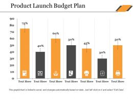 Product Launch Budget Plan Ppt Show