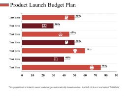 Product Launch Budget Plan Ppt Styles Icon