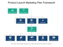 Product Launch Marketing Plan Framework Ppt Examples