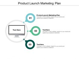 Product Launch Marketing Plan Ppt Powerpoint Presentation Infographics Portfolio Cpb