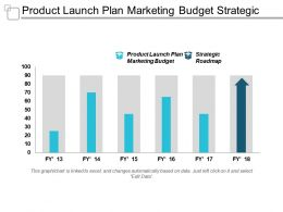 Product Launch Plan Marketing Budget Strategic Roadmapping Cpb