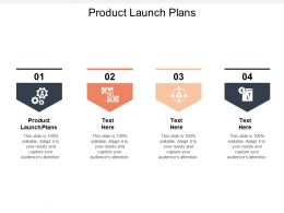 Product Launch Plans Ppt Powerpoint Presentation Gallery Themes Cpb