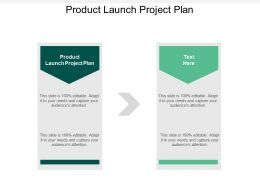 Product Launch Project Plan Ppt Powerpoint Presentation Gallery Tips Cpb