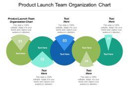 Product Launch Team Organization Chart Ppt Powerpoint Presentation Infographics Inspiration Cpb