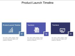 Product Launch Timeline Ppt Powerpoint Presentation Infographic Template Structure Cpb