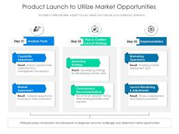 Product Launch To Utilize Market Opportunities