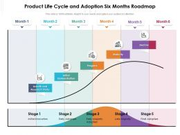 Product Life Cycle And Adoption Six Months Roadmap