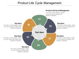 Product Life Cycle Management Ppt Powerpoint Presentation Ideas Template Cpb
