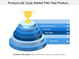 Product Life Cycle Market Pilot Test Product Development