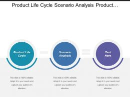 Product Life Cycle Scenario Analysis Product Assessment Selection