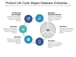 Product Life Cycle Stages Database Enterprise System Project Management Role Cpb