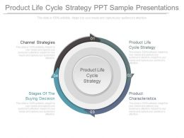 Product Life Cycle Strategy Ppt Sample Presentations