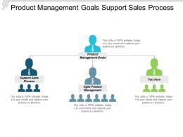 Product Management Goals Support Sales Process Agile Product Management Cpb