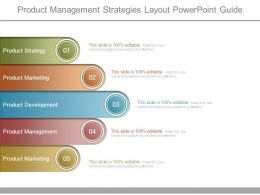Product Management Strategies Layout Powerpoint Guide