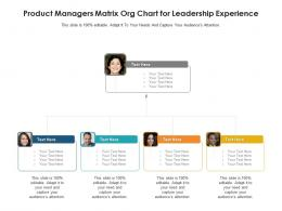 Product Managers Matrix Org Chart For Leadership Experience Infographic Template
