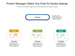 Product Managers Matrix Org Chart For Quotes Sayings Infographic Template