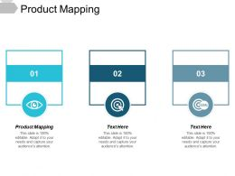 Product Mapping Ppt Powerpoint Presentation Show Slides Cpb
