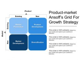 Product Market Ansoffs Grid For Growth Strategy