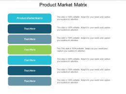Product Market Matrix Ppt Powerpoint Presentation Show Template Cpb