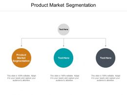 Product Market Segmentation Ppt Powerpoint Presentation Show Visual Aids Cpb