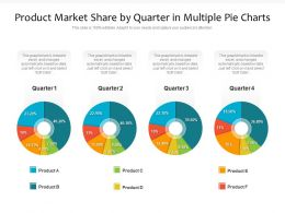 Product Market Share By Quarter In Multiple Pie Charts