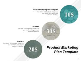 Product Marketing Plan Template Ppt Powerpoint Presentation Portfolio Model Cpb