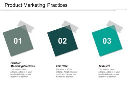 Product Marketing Practices Ppt Powerpoint Presentation Pictures Example File Cpb