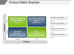 Product Matrix Example Ppt Icon