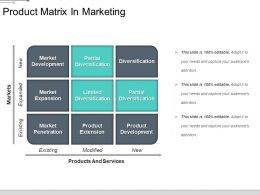 Product Matrix In Marketing Ppt Images