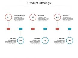 Product Offerings Ppt Powerpoint Presentation Outline Example Cpb