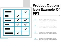 Product Options Icon Example Of Ppt