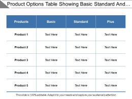 Product Options Table Showing Basic Standard And Plus Comparison