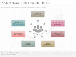 Product Owner Role Example Of Ppt