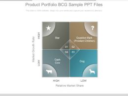Product Portfolio Bcg Sample Ppt Files