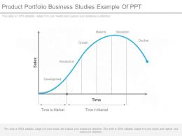 Product Portfolio Business Studies Example Of Ppt