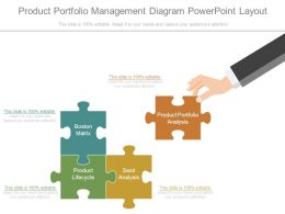 Product Portfolio Management Diagram Powerpoint Layout