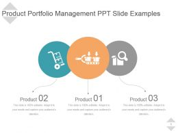 Product Portfolio Management Ppt Slide Examples