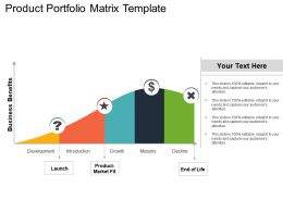 Product Portfolio Matrix Template Ppt Example File