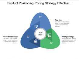 Product Positioning Pricing Strategy Effective Organizational Leadership Team Performance