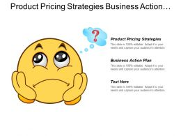 Product Pricing Strategies Business Action Plan Quality Management