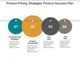 Product Pricing Strategies Product Success Plan Management Surveys Cpb