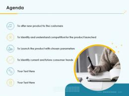 Product Pricing Strategy Agenda Ppt Ideas
