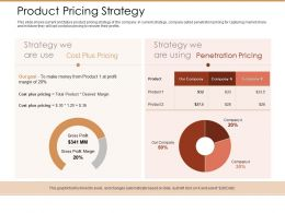 Product Pricing Strategy Ppt Powerpoint Presentation Styles Clipart