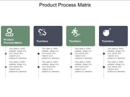 Product Process Matrix Ppt Powerpoint Presentation Slides Display Cpb