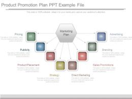 Product Promotion Plan Ppt Example File