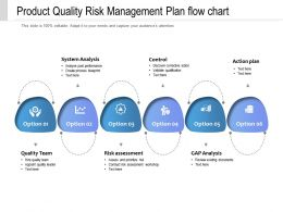 Product Quality Risk Management Plan Flow Chart